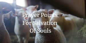 Prayer Points For Salvation of Souls